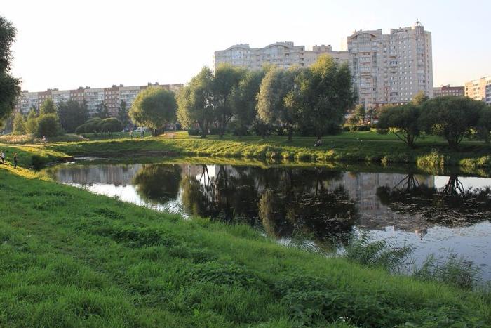 Смольный запретит строить храм в центре парка «Малиновка»