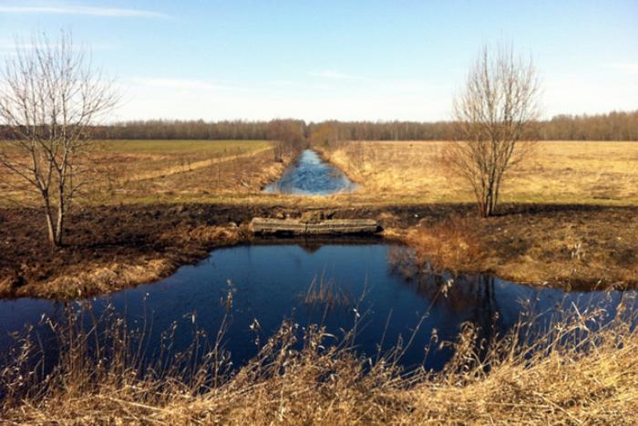 Депутаты поддержали застройку Кондакопшинского болота городом-спутником Южный