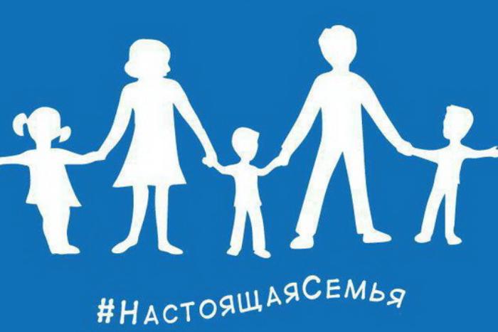 Единороссы скопировали дизайн флага гетеросексуалов у французской организации