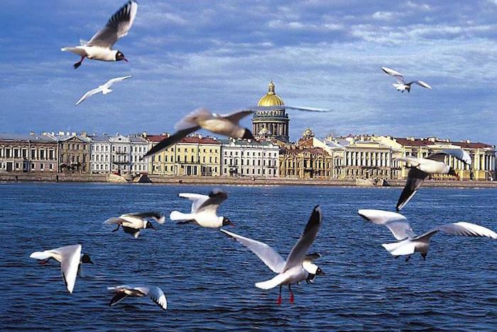 В Петербурге ожидается 30-градусная жара и грозы