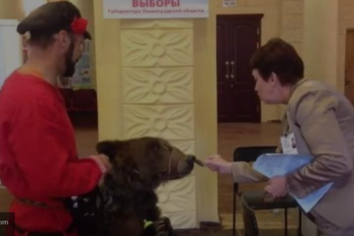 Почему выборы губернатора Ленобласти оказались такими скучными и что петербуржцы делали в других регионах
