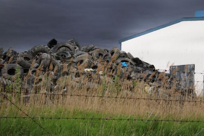 Полтавченко заявил, что мусороперерабатывающего завода в Красном Бору не будет