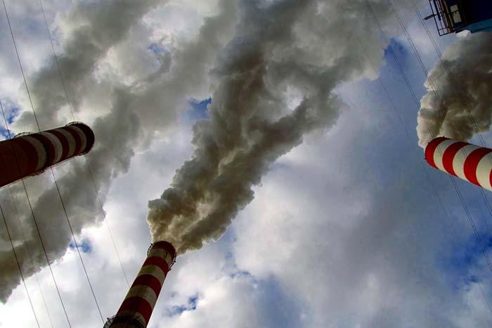 Эколог и глава местной администрации — о том, что будет после отмены строительства «токсичного» завода в Красном Бору