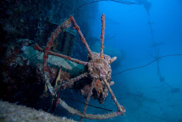 В Доке Петра Великого в Кронштадте откроют подводный музей затонувших кораблей