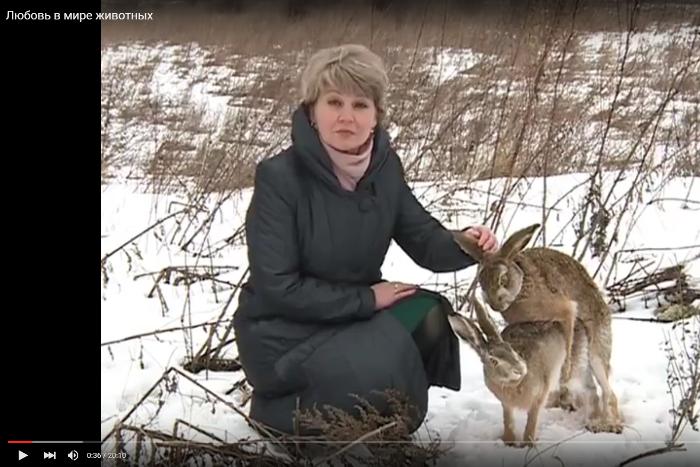 Новости в минфине украины