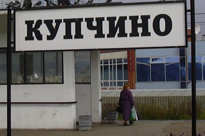 Активисты передали властям требование запретить склонение Купчина и Колпина