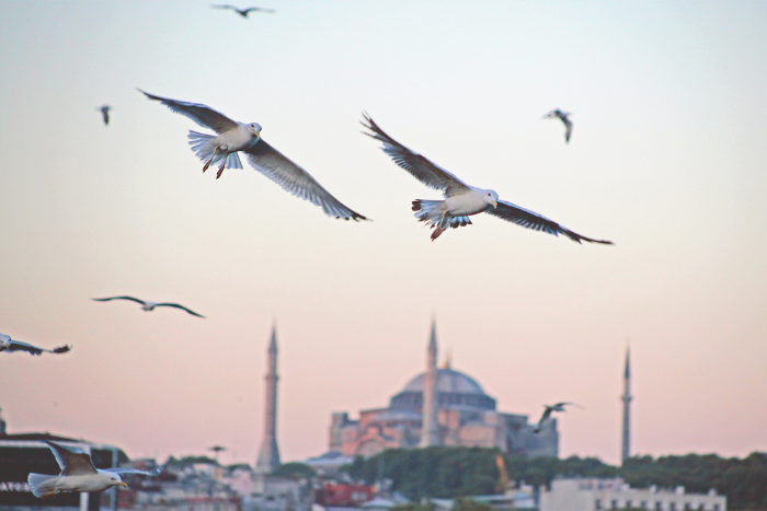 «В Петербурге я чувствую себя менее безопасно»: почему петербуржцы собрались в Турцию сразу после теракта