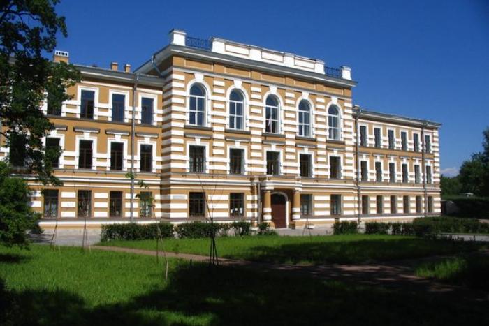 Директора Петергофской гимназии уволили за подделку оценок