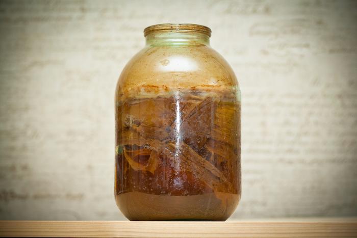 Как бабушкин чайный гриб превратился в популярный напиток ичем еще модно утолять жажду