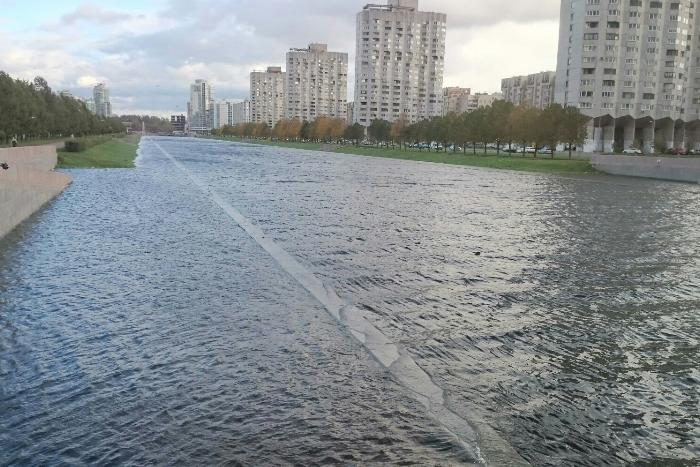 Река Смоленка вышла из берегов, сообщают очевидцы
