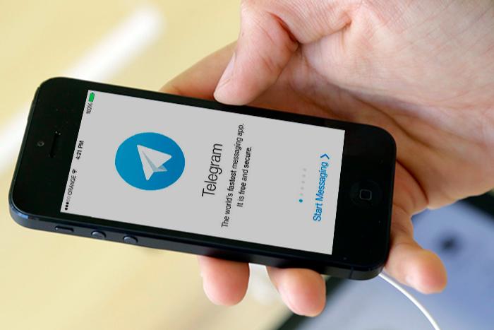 «Команда 29» запустила чат в Telegram, где можно получить онлайн-консультацию юристов