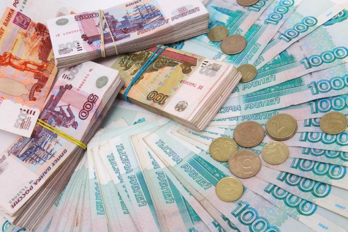 Жители двух районов Петербурга смогут сами решить, на что потратить 10 миллионов из бюджета