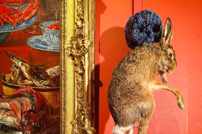 От чучела кролика до карнавала «встиле Яна Фабра»: из чего состоит выставка знаменитого бельгийца вЭрмитаже