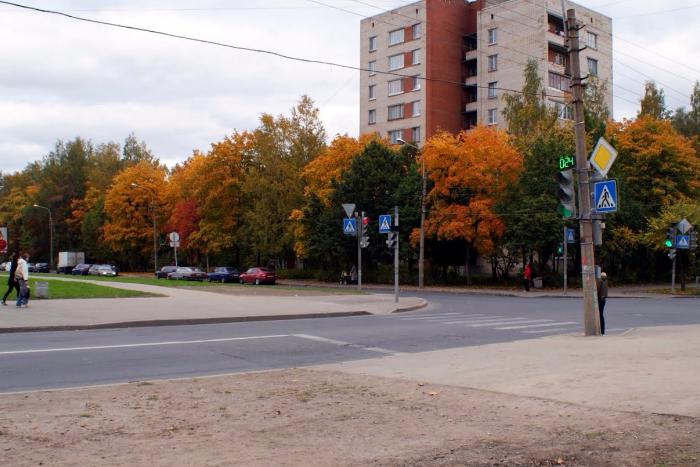 В Пушкине 46 зданий остались без отопления из-за прорыва трубы