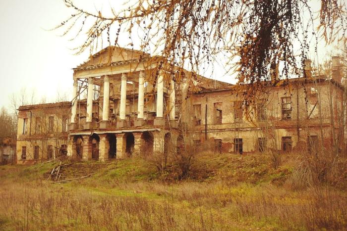 «Роснефть» попросила в аренду Ропшинский дворец