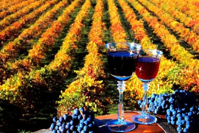 Россия сняла запрет на импорт молдавских вин