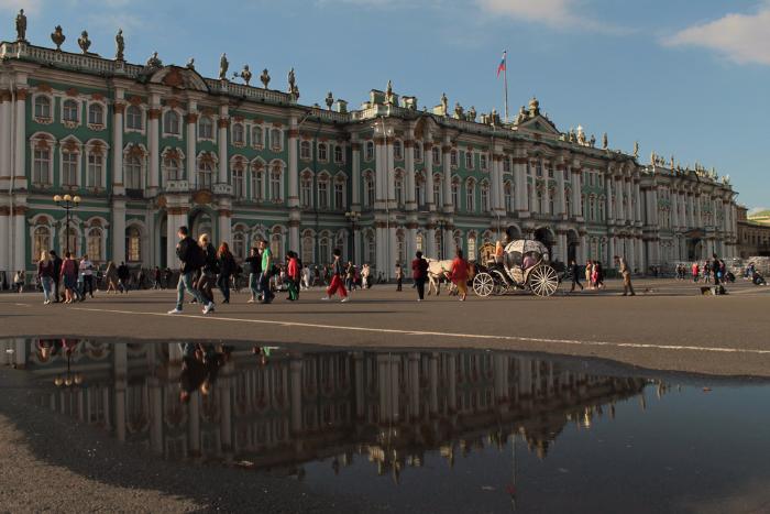 Почему лужи в Петербурге не высыхают и куда на них жаловаться?