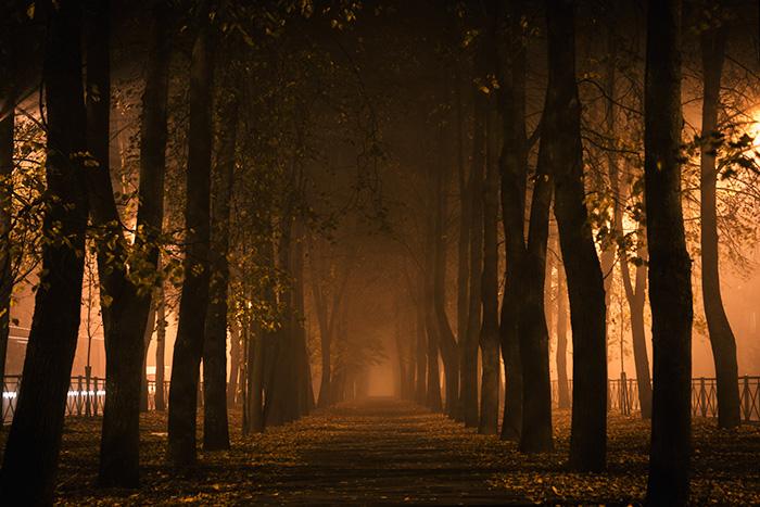 Призрак Павла I, великан без головы и черный кот с кладбища: десять петербургских привидений