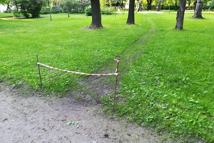 Прикрыть мусор землей и приклеить ветки к деревьям: 10 примеров неудачного благоустройства в Петербурге