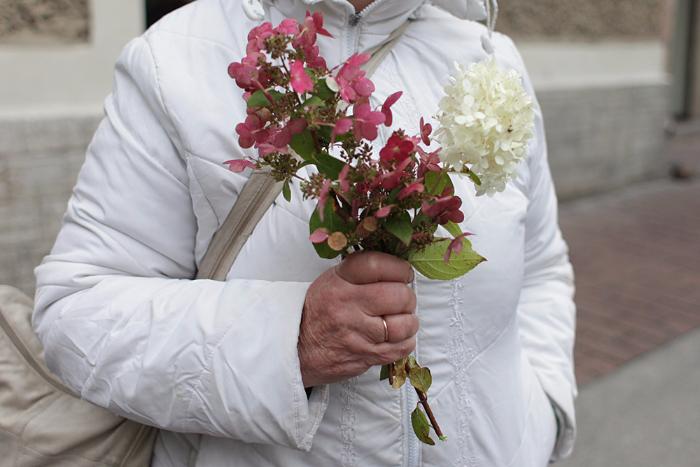 «Здесь стоять — неблагодарная работа, а работа в саду — она для души»: торгующие цветами петербургские бабушки — о своих садах, гордости и деньгах
