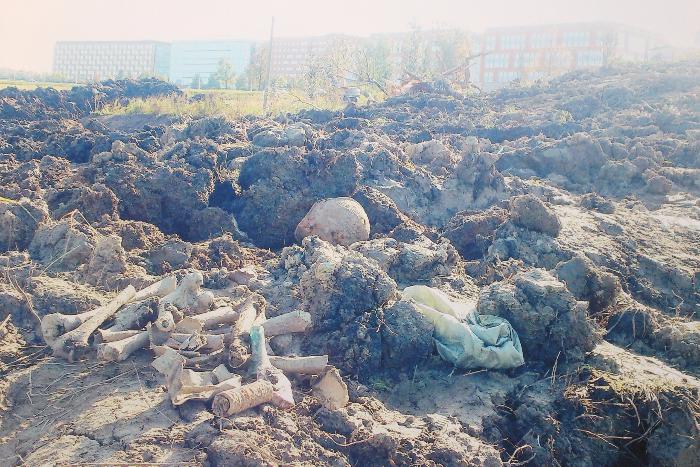 Строительство развязки к «Экспофоруму» перенесли на 2019 год из-за найденных захоронений