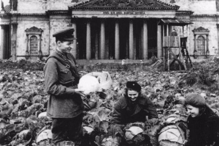 Arzamas выпустил курс лекций о блокаде Ленинграда. В него вошла антология блокадной поэзии и подборка дневников