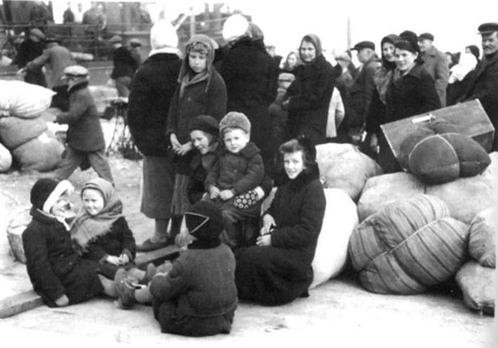 «Глухая тайга, деревянный дом, инас туда — как свиней». Каквсоветские годы ингерманландцев депортировали изЛенобласти и как они возвращались домой