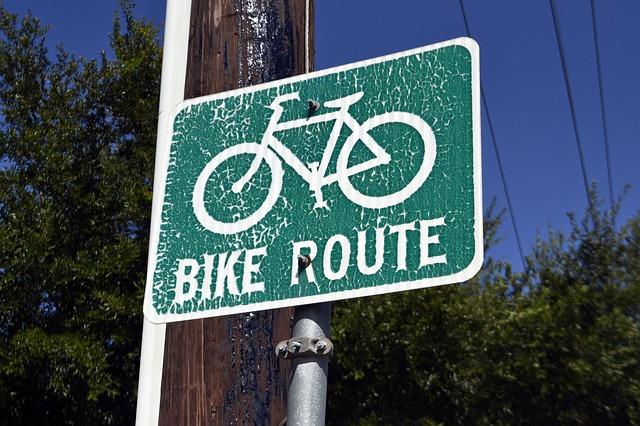 В центре Петербурга появится еще одна велодорожка — от Адмиралтейского канала до Гороховой улицы