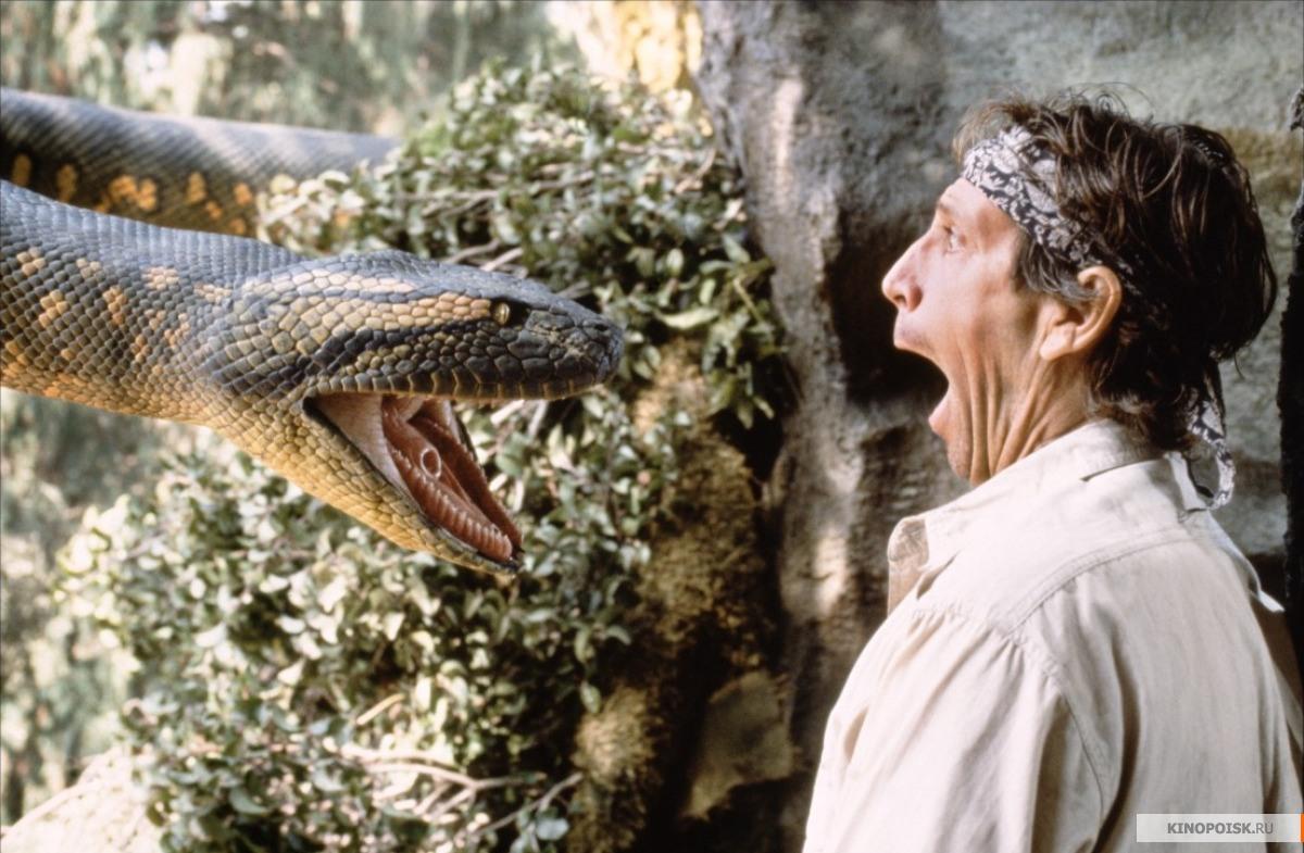 Пираньи, крокодилы-убийцы и анаконды: фотограф National Geographic развеивает главные мифы об Амазонке
