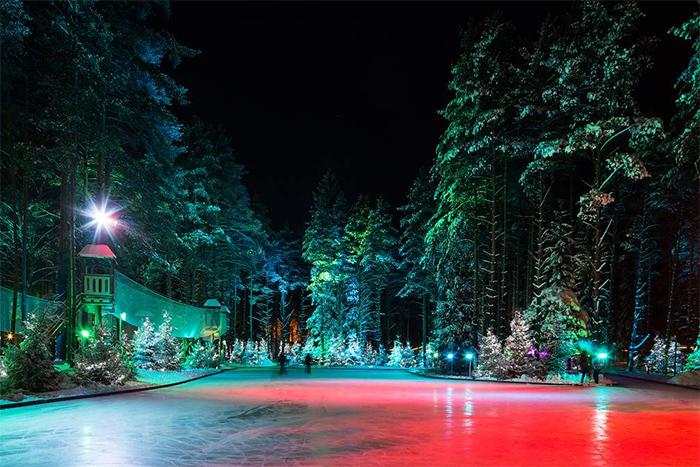 Девять петербургских катков, где можно погладить оленя, бесплатно сфотографироваться и поиграть в хоккей