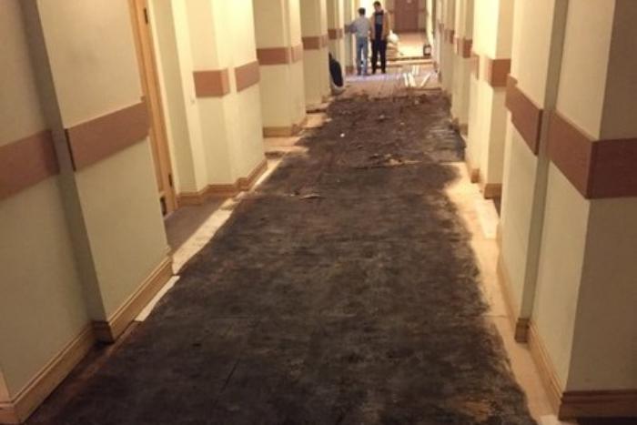 Студенты петербургской консерватории пожаловались на грибок и плесень в недавно отремонтированном здании на улице Глинки