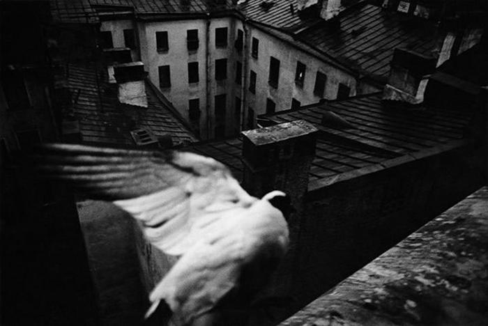 Как Борис Смелов и ленинградские фотографы 70-х создали образ непарадного Петербурга. Рассказывает куратор выставки вЭрмитаже