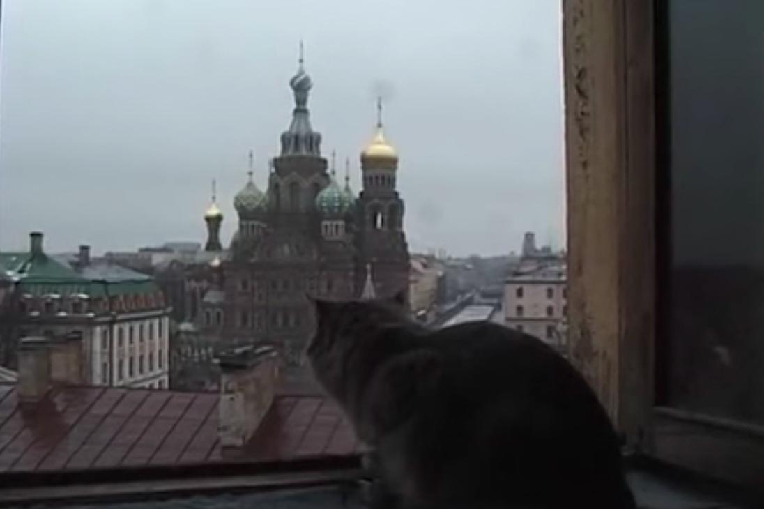 8 зарубежных документальных фильмов о Петербурге: от истории Мариинского театра до нападений на ЛГБТ-активистов