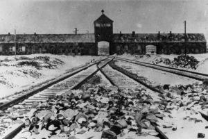 Петербуржцы рассказывают, как они выжили в нацистских концлагерях. Освенцим, Найденбург и Брест