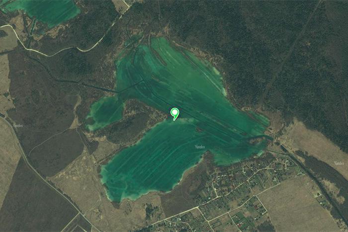 Где в Ленобласти этим летом можно купаться — на интерактивной карте