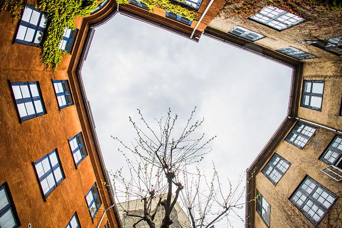 Пройдите тест и отличите дворы ижилые кварталы Петербурга отСтокгольма, Хельсинки иКопенгагена