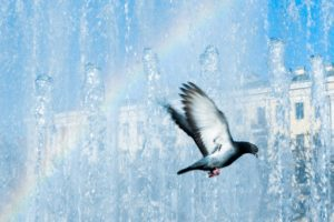 Петербург — чистый город? Как пыль, свалки и разноцветная река отражаются на экологии
