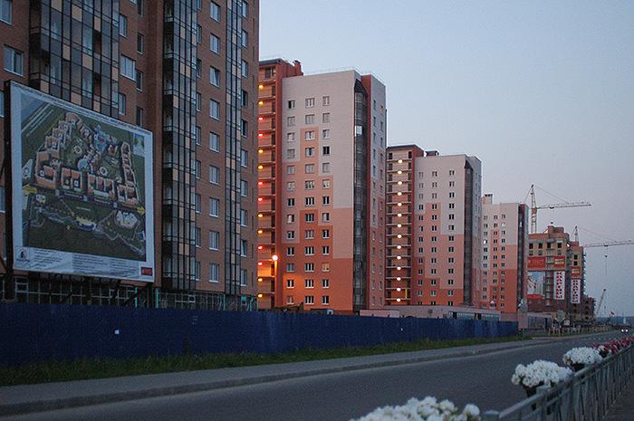 Почему в Петербурге не перестанут строить «муравейники» и можно ли с ними бороться? Рассказывает экономико-географ