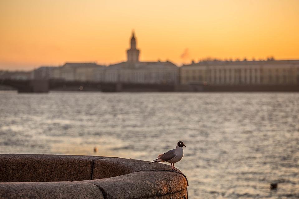 За что иностранные болельщики полюбили Петербург. 10 находок — от красивого метро до баров имедовика