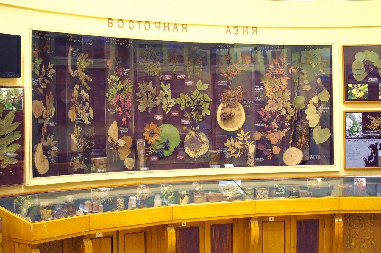 В конце июля на один день откроют вход в Ботанический музей. Туда пускают несколько раз в год