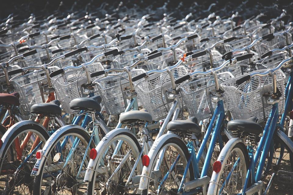 К середине октября на набережной Фонтанки проложат еще одну велодорожку — от Гороховой улицы до Старо-Петергофского проспекта