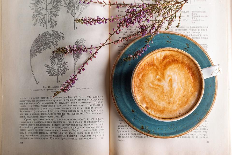 Как в Петербурге открывают кофейни и на чем они зарабатывают? Истории «Смены», Mad Espresso Team, «Больше кофе!» и«Зерен»