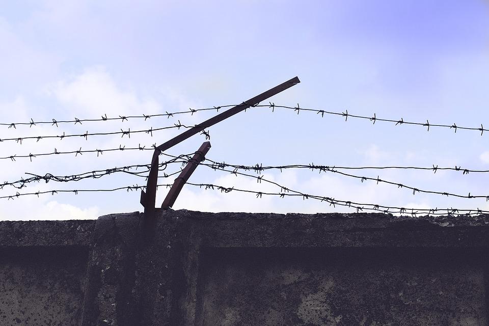 ФСИН передала в СК 42 видеозаписи нарушений прав заключенных в российских колониях