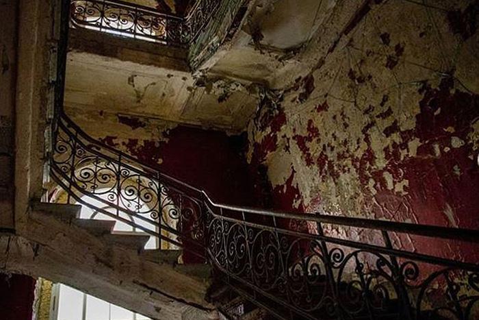 Парадная или музей? Пройдите тест и узнайте петербургские места по интерьерам, лепнине и экспонатам
