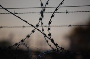 Двое фигурантов дела «Сети» объявили голодовку в знак протеста против давления в СИЗО
