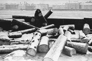 Поход на Неву за водой, сбор цветов для раненых и просушка коллекции Кунсткамеры. 20 фото повседневной жизни блокадного Ленинграда