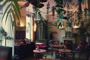 Где в Петербурге пообедать в окружении пальм и цветов? Семь кафе с живыми растениями