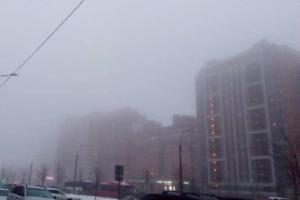 «Доброе утро и добро пожаловать в Сайлент Хилл»: петербуржцы фотографируют густой февральский туман и пытаются разглядеть соседние дома