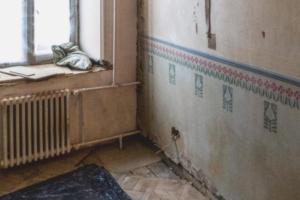 Петербуржцы при ремонте квартиры нашли росписи в стиле модерн начала XX века