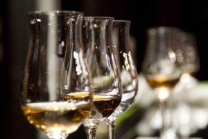 Говорят, умеренное потребление вина полезно. Значит ли это, что вино лечит и какие его компоненты могут использовать в медицине